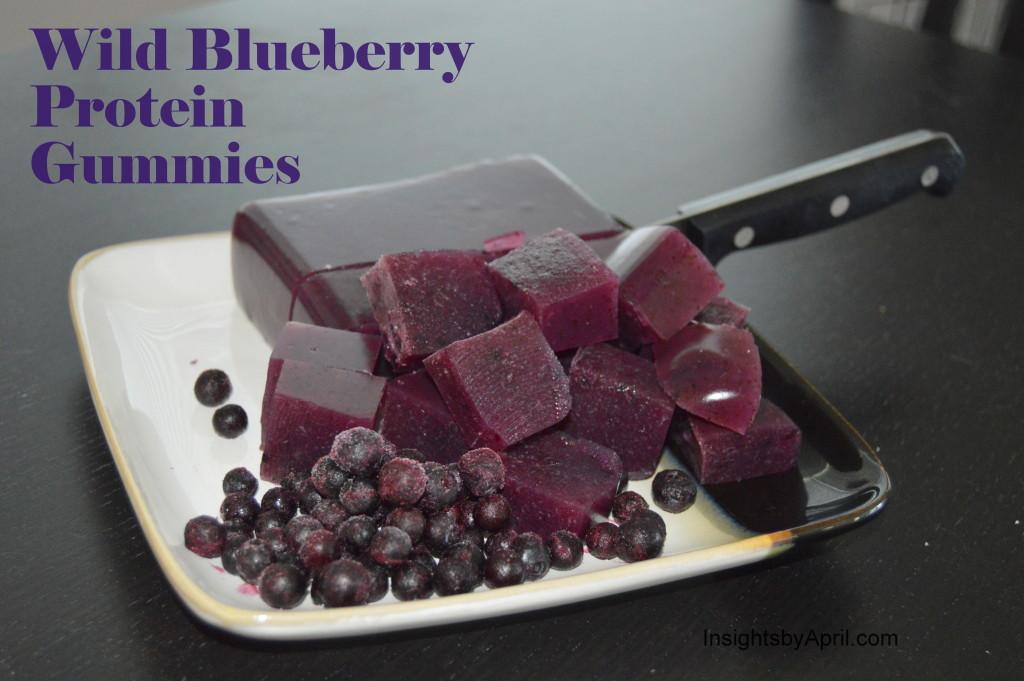Wild Blueberry Protein Gummies