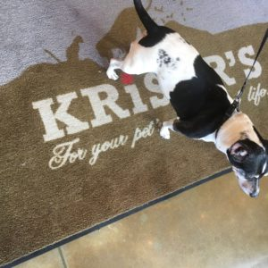 Products for Your Holistic Pet from Kriser's Natural Pet