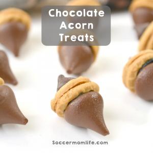 Simple Chocolate Acorn Treats